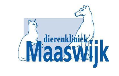 kliniek-maaswijk-www-dierenkliniekmaaswijk-nl