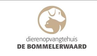 logo-bommelerwaard